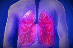 Aparaty USG w diagnostyce medycznej